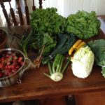 How to Work The Farm Share: Early Summer Strategies