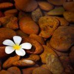 Attracting Abundance: Window of Heaven Gets A New Office
