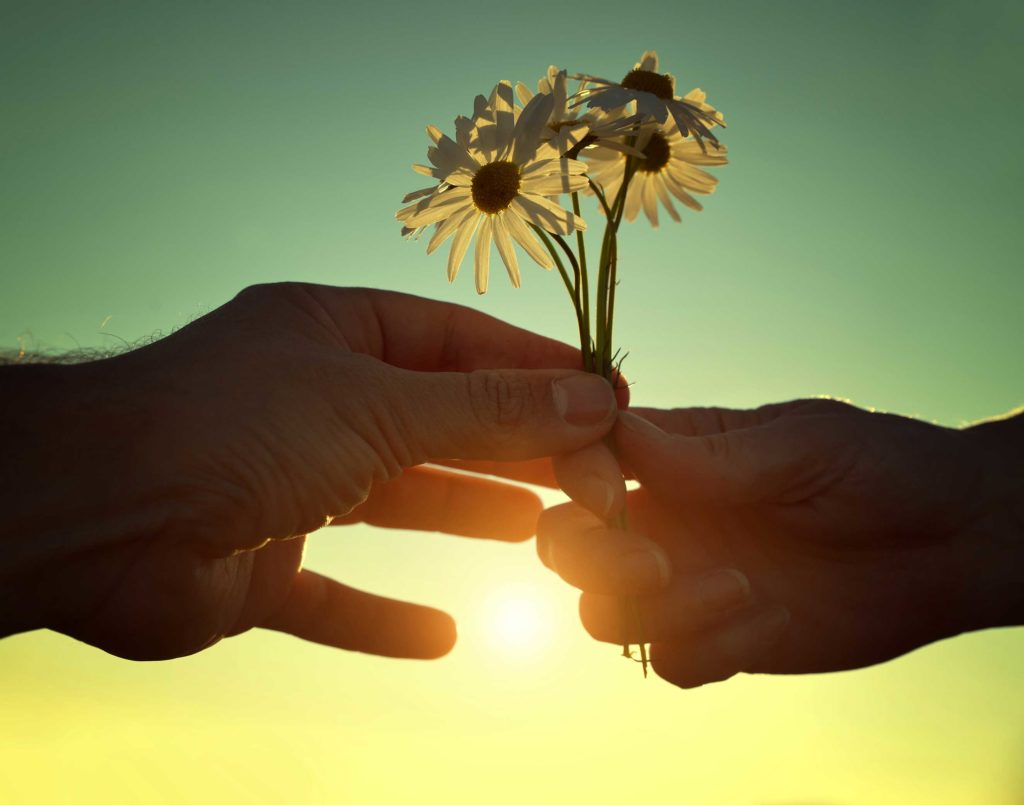 a person hands two daises to another person in bright sunshine